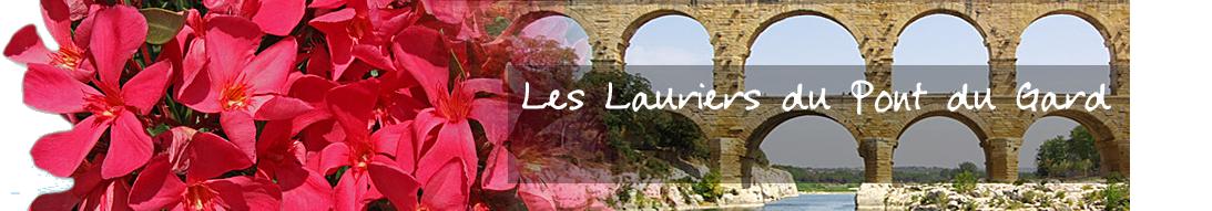 Les Lauriers du Pont du Gard - Spécialiste en lauriers roses